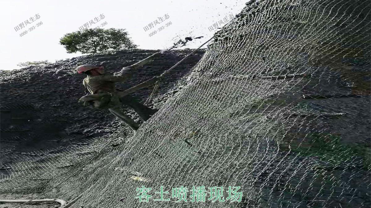 珠海横琴采石场生态修复工程