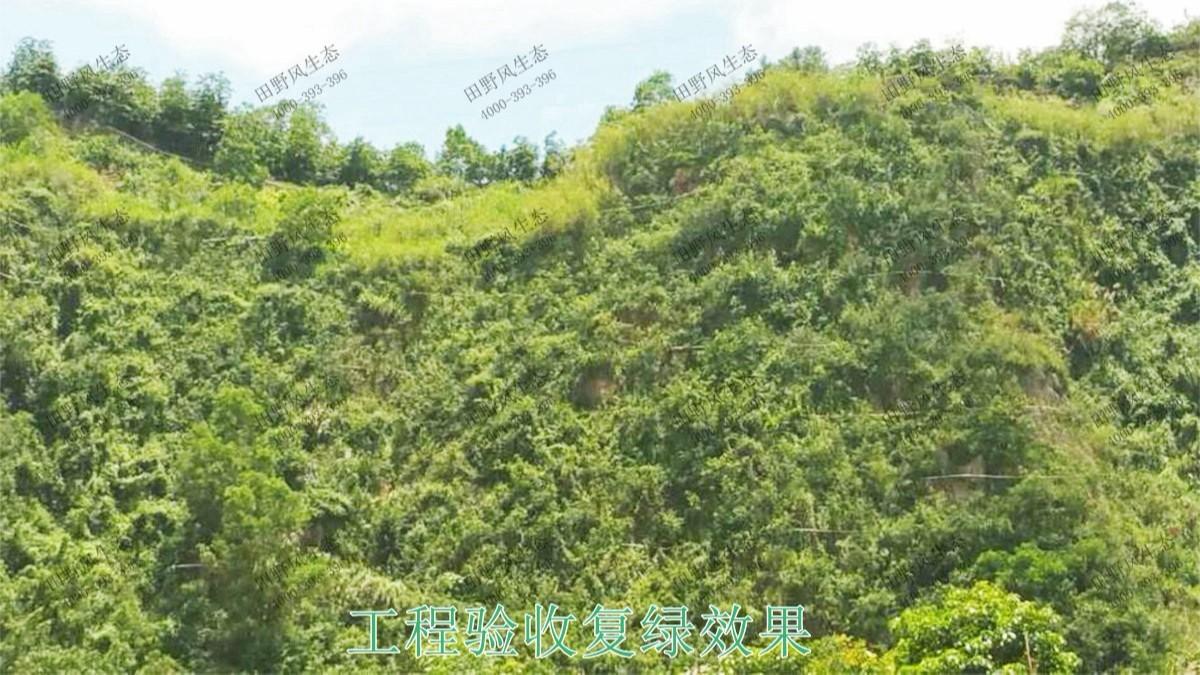 清远界牌石场矿山边坡喷草