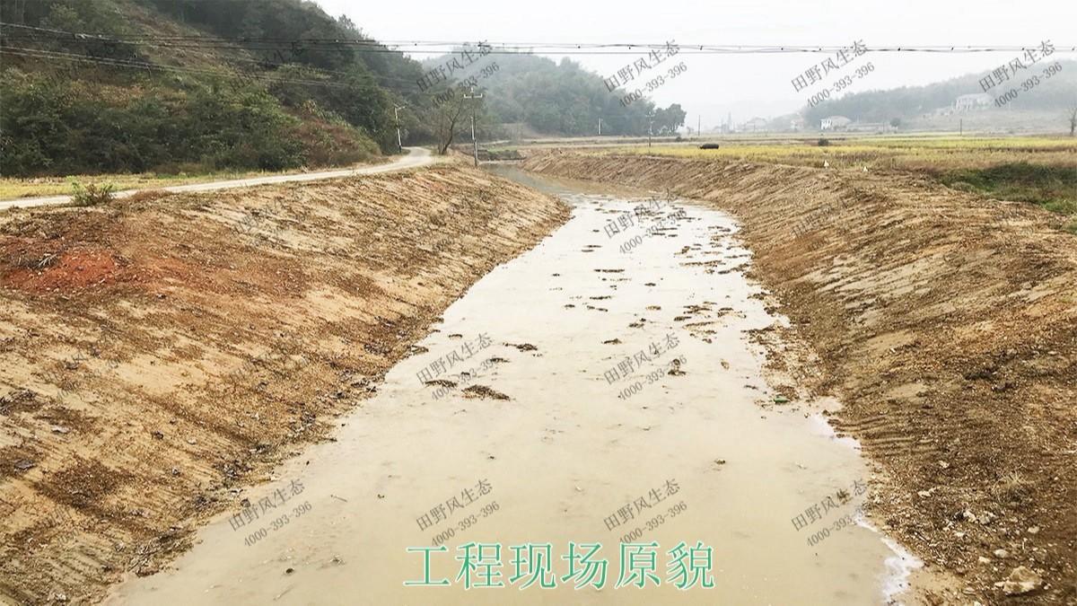 中山翠享湿地公园生态修复工程