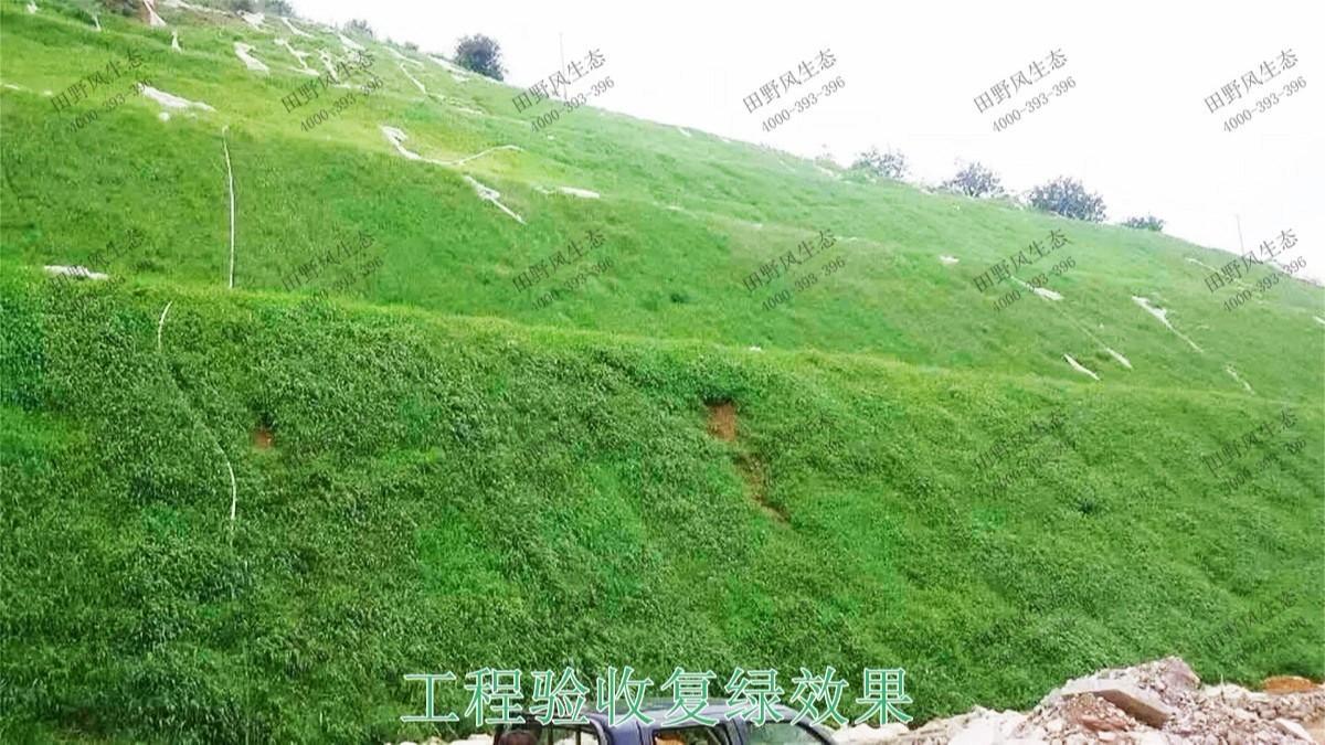 珠海长隆集团皙养基地边坡修复工程