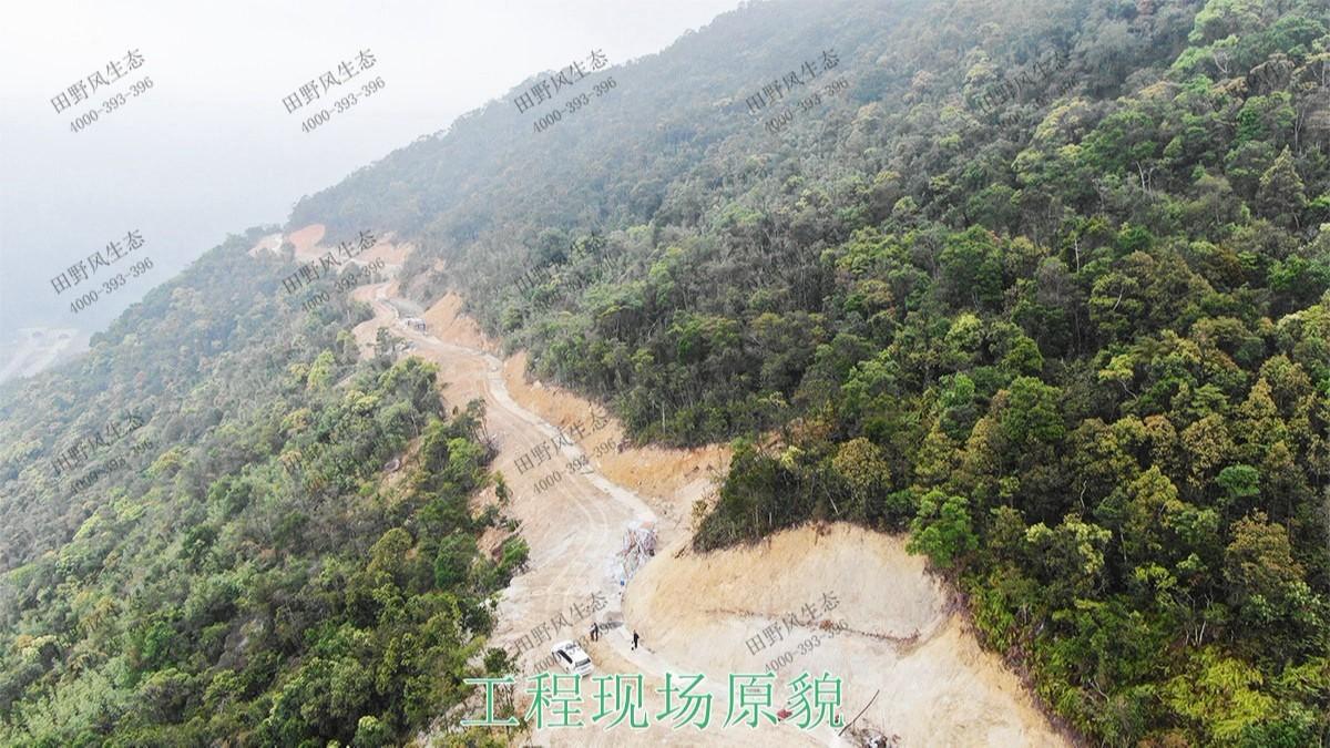 海丰莲花山山体滑坡生态修复工程