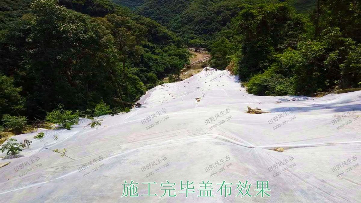 广东高枨铅锌矿采石场边坡复绿工程