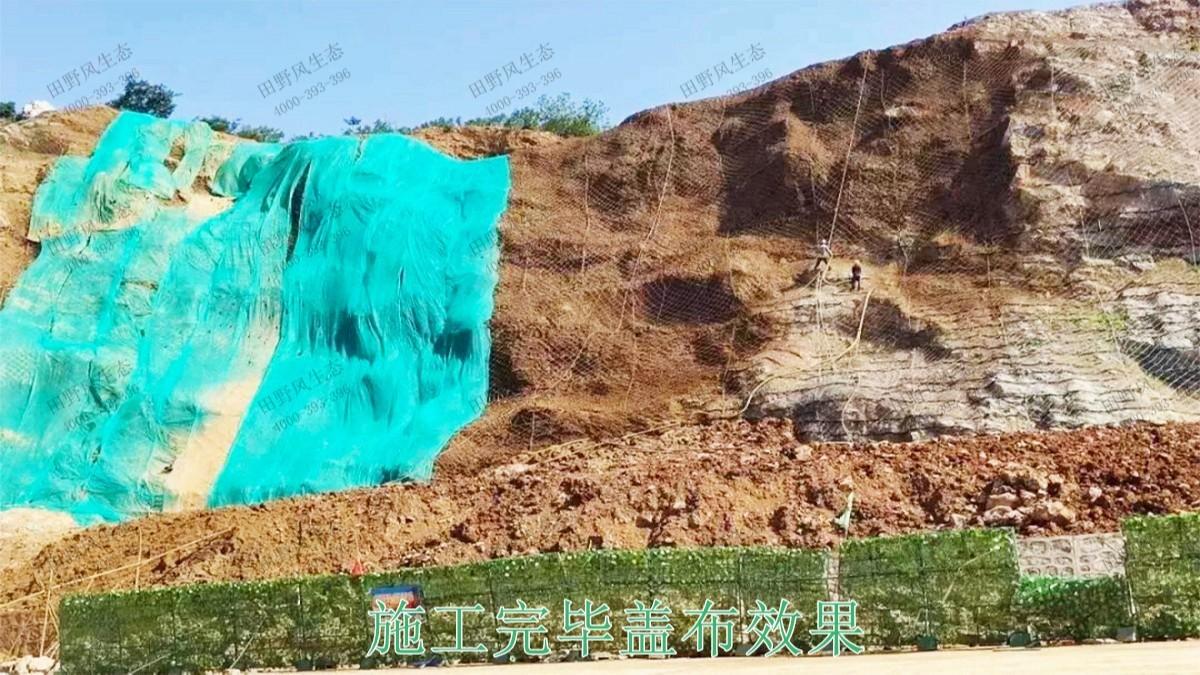高州市泗水镇林丰石场生态修复工程
