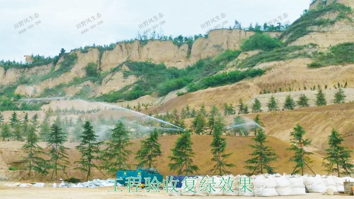 乐昌鳖石石场岩石绿化施工