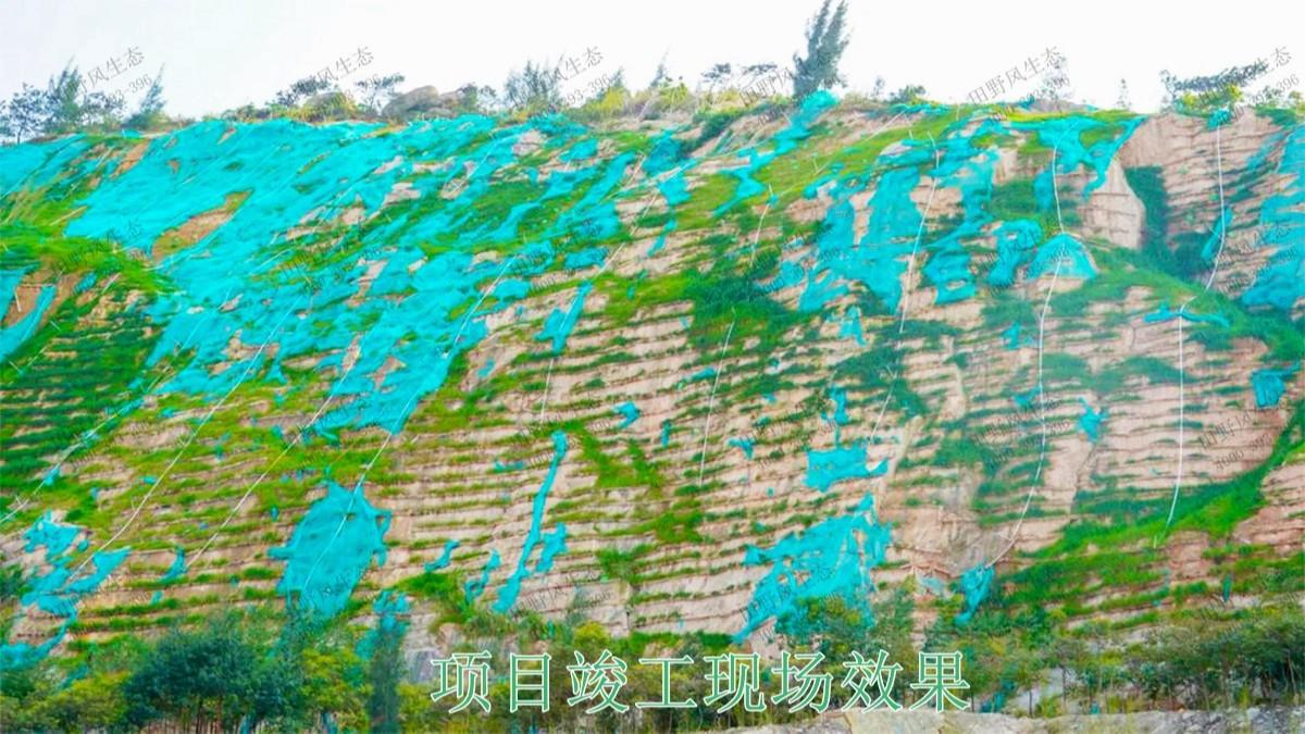 梅州永福石场生态修复工程