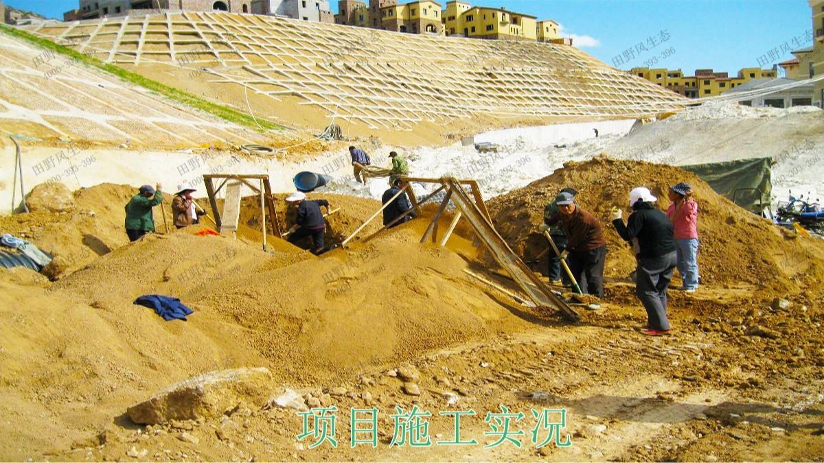 广珠高速中山段公路边坡修复工程