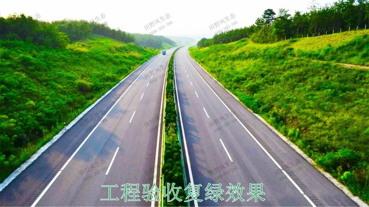 江肇高速四会段公路边坡修复工程