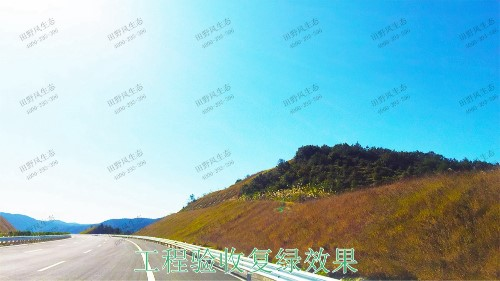 梅龙高速梅州段道路边坡植草工程
