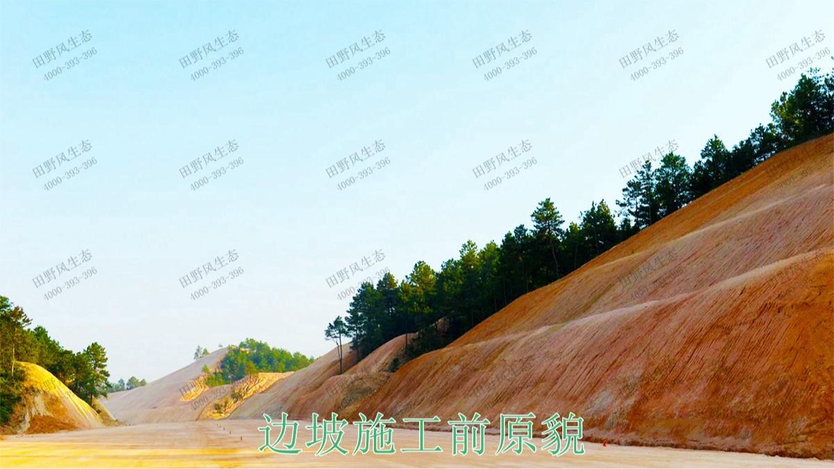 平兴高速五华段公路边坡修复工程