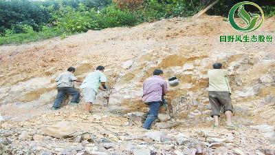 矿山生态修复,四大操作!助您实现绿色发展