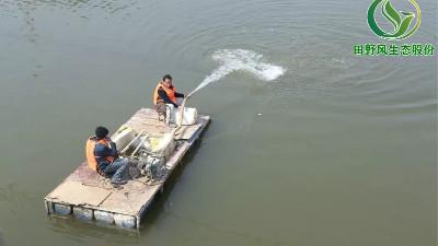 河道生态修复 绿色环境治理