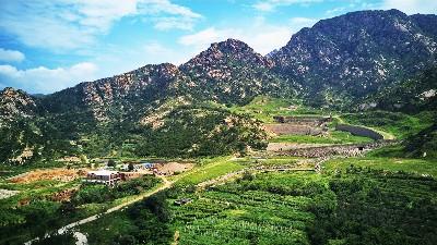 海南岛生态绿化工程