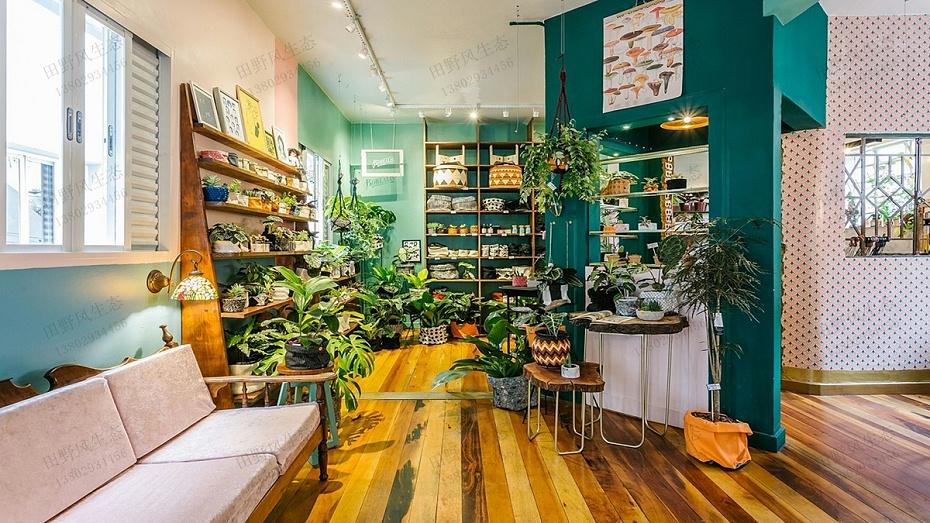 咖啡店植物租摆