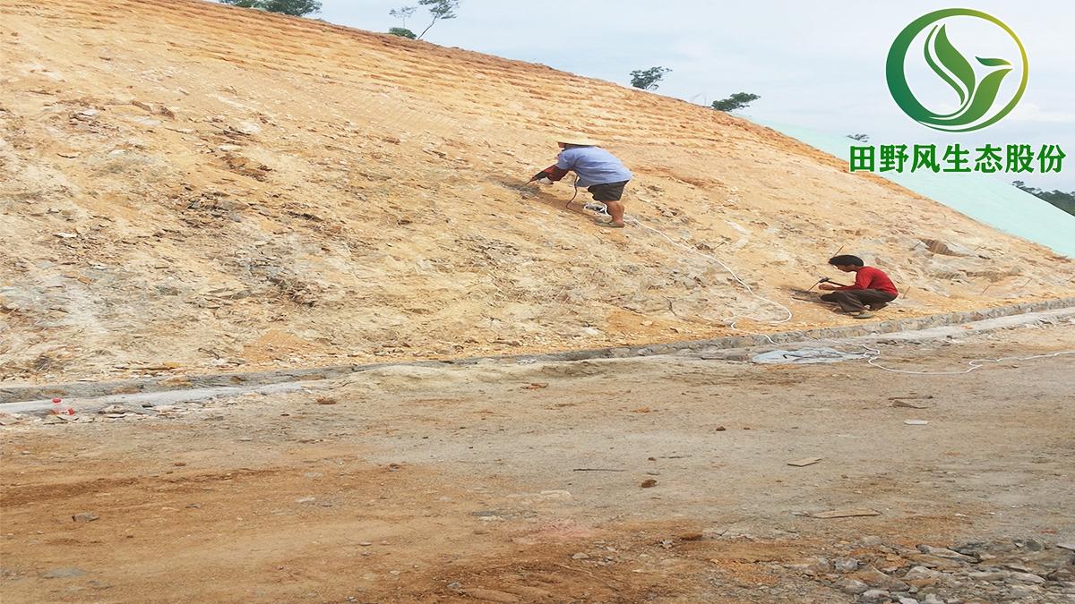 矿山生态复绿,矿山修复